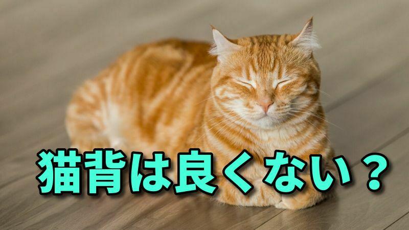 ゴルフの猫背は良くない?【背筋を伸ばして反り腰の方が最悪】